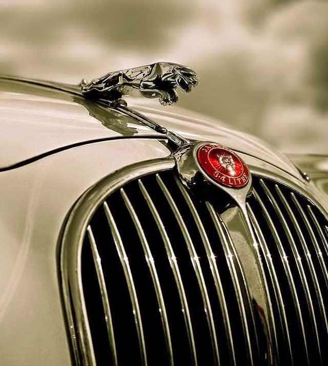 voiture de mariage Jaguar